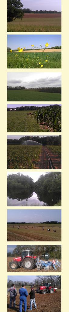 6-photos-polyculture.jpg